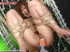Jekstrim v japonskom BDSM sekse