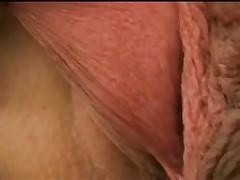 Большие половые губы