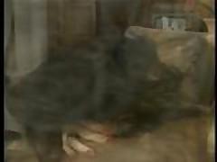 Винтажное видео с грудастой красоткой в чулках