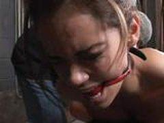 Дейзи Мари латиноамериканская порно звезда