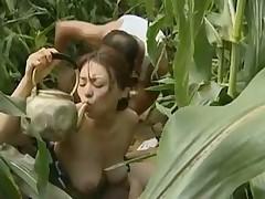 Азиатку выебали в поле